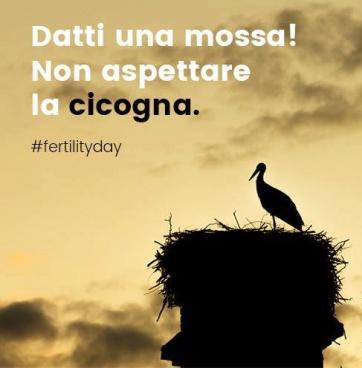 Stork Image 1